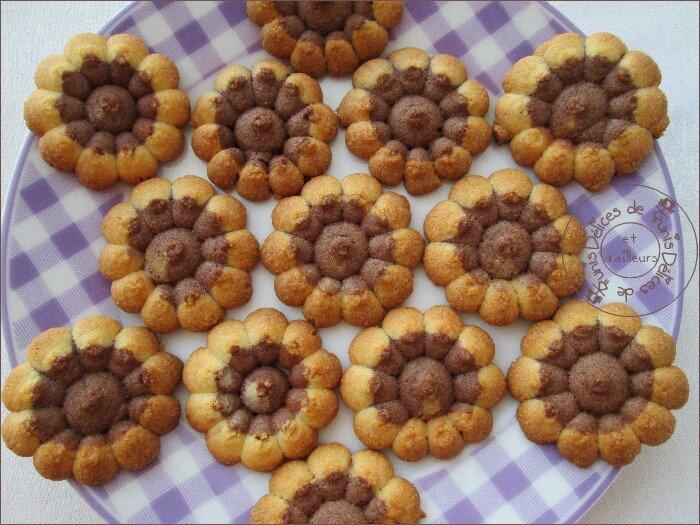 biscuits presse chocolat-vanille 2
