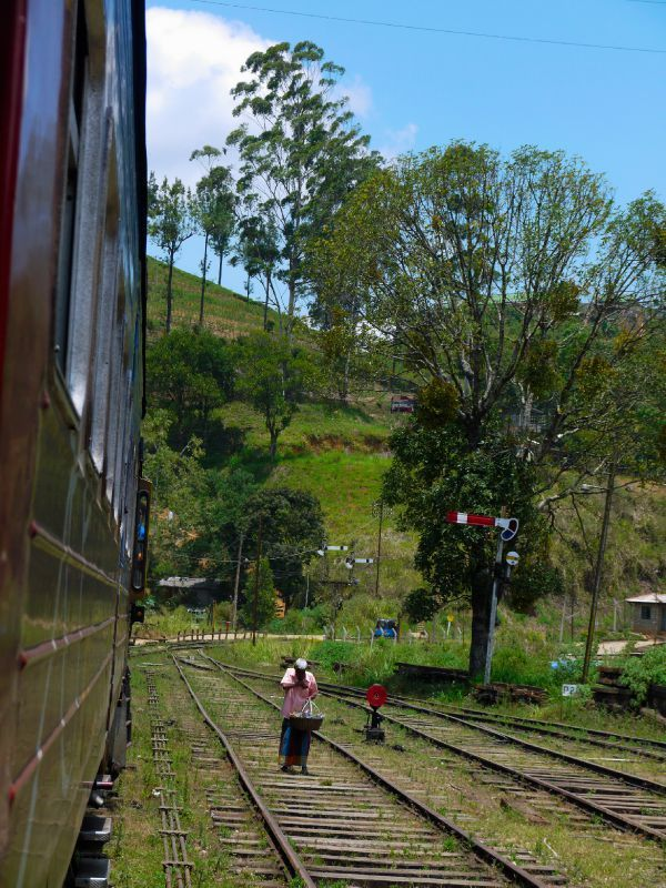 Sri Lanka train 8