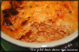 Flan_carottes2