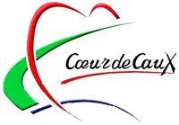 communauté de communes du Coeur de Caux au coeur du pays de caux - Windows Internet Explorer 08082009 084332