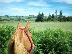 Aller au bout du monde à cheval