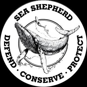 source : sea shepherd officiel