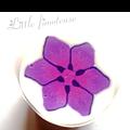Une petite fleur toute neuve