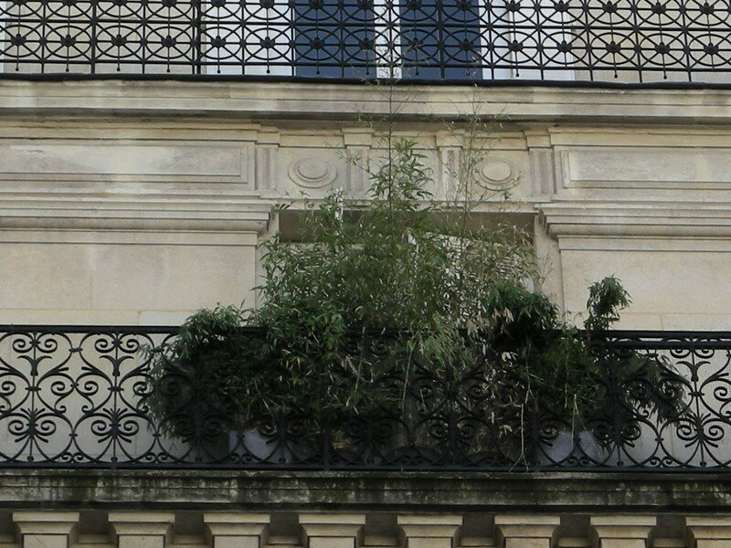Paris, été 2007