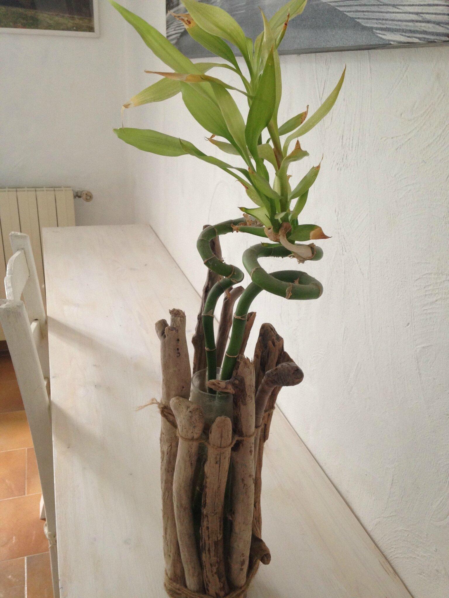 Cache vase en bois flotté