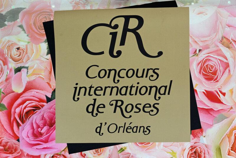 Concours-International-de-Roses-d'orléans