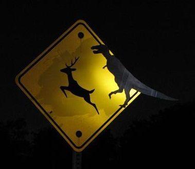 panneaux_signalisation_street_art_4