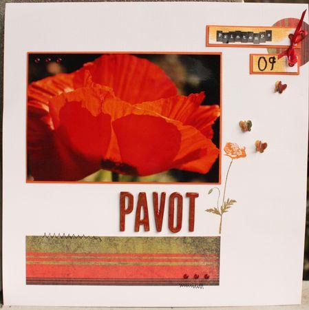 pavot1
