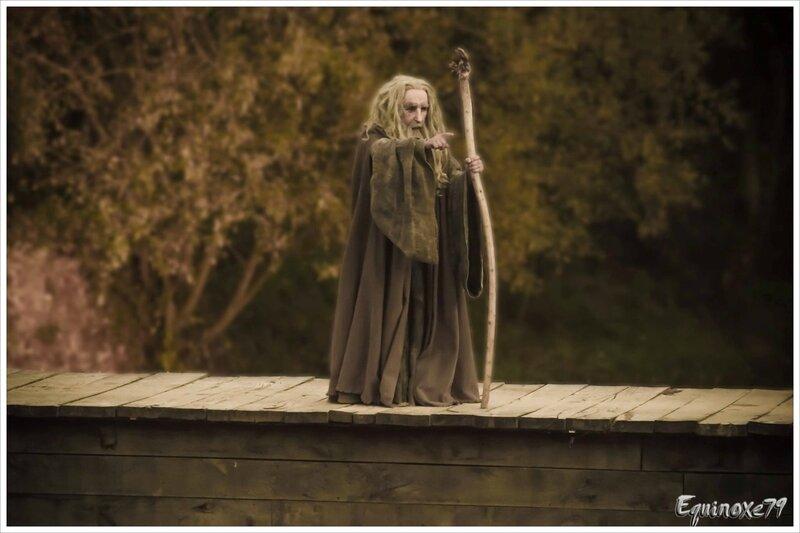 Merlin l'Enchanteur les chevaliers de la table ronde (3)