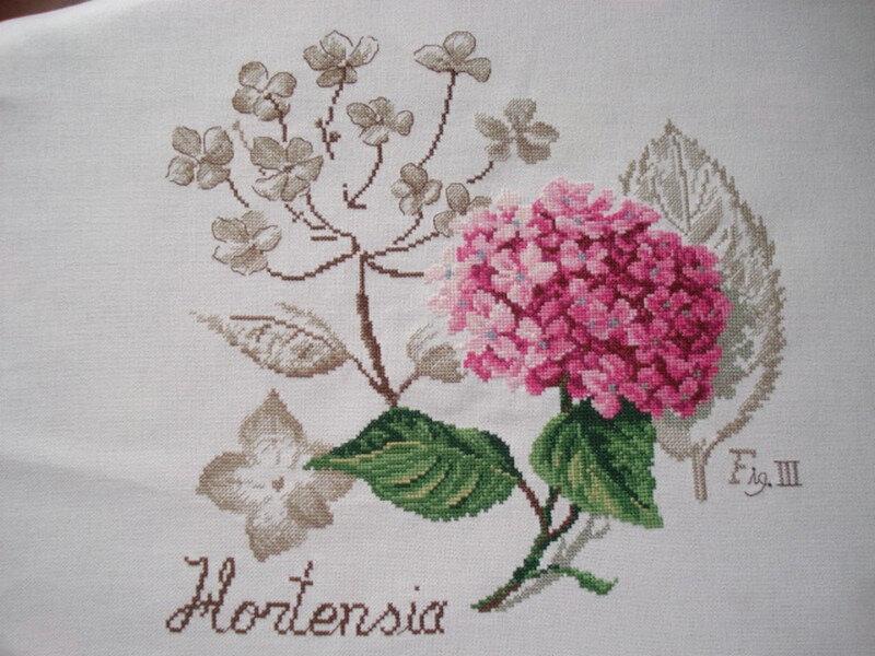 266 - etude botanique Danielle