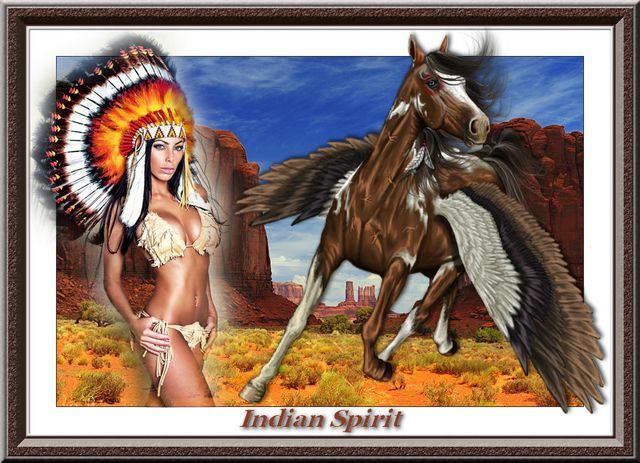 indian spirit -image-photomusique