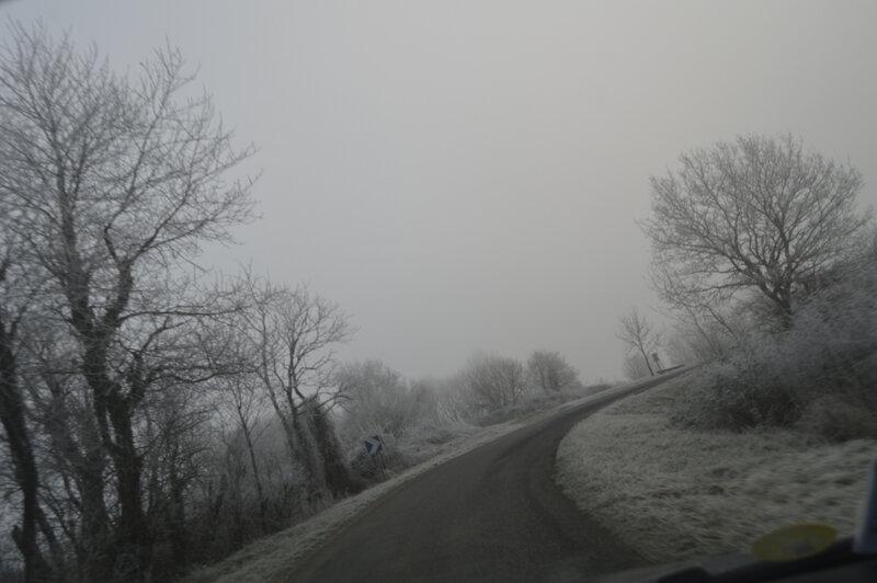 _DSC0103