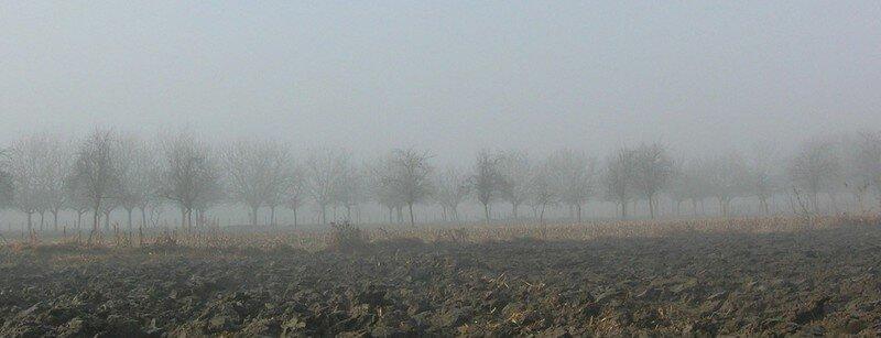 Terre résolument embrumée... (hiver 2008)