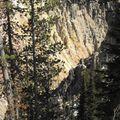 3 - Canyon du Yellowstone (05)