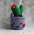 Cal mignonneries : cactus