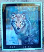 Tableau de loup trouvé devant une poubelle 2