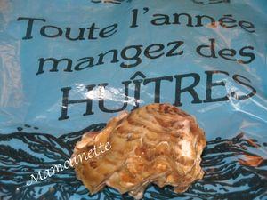 Cancale et ses huîtres et Handy à la plage début janvier 2013 019