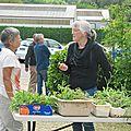 Bourse d'échanges de plants avec l'association biodiva