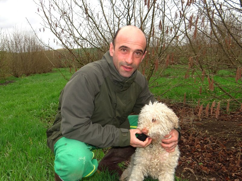 Stéphane Philippe Truffes Harmonville mardi 5 avril 2016