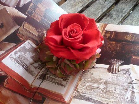 blog rouge