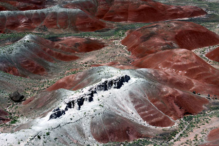 Petrified_Forest_33