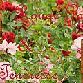 titre_fleurs_4