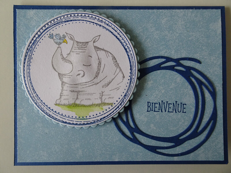25b Carte Duo d'animaux Swirly frames et Tourbillonant