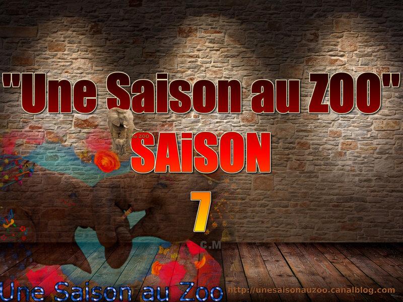 - une SAiSON au ZOO saison 7