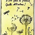 n° 384, douceur, ok (459x640)