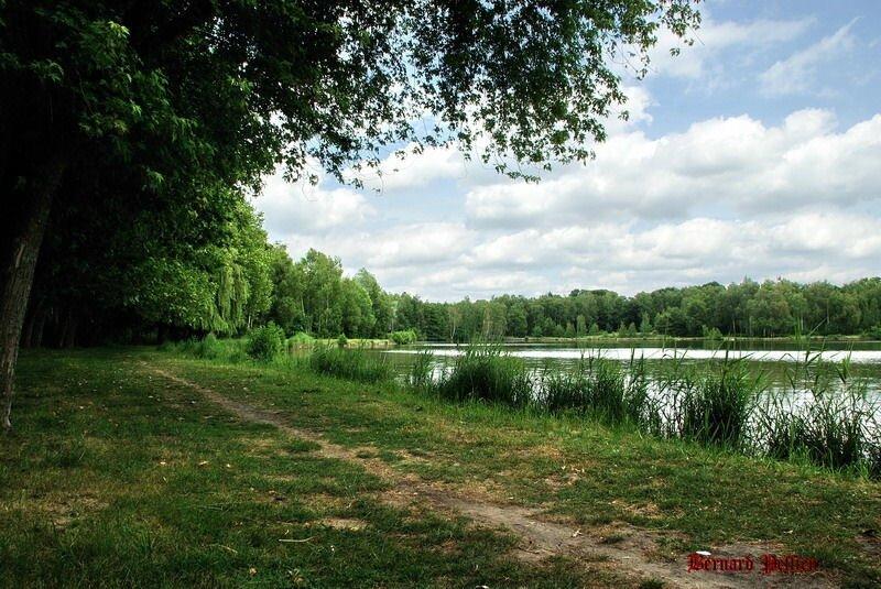 20150620_picnic__52_redimensionner