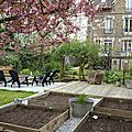 Windows-Live-Writer/Joli-printemps-au-jardin-_601C/20170331_141437_2