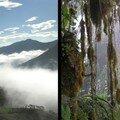 Yunguilla, une communauté au milieu des nuages