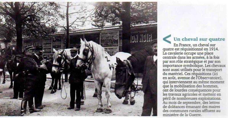 1 cheval sur 4