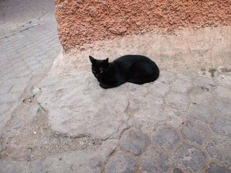marrakech-rue13