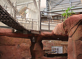 espace aventure ferme crocodile
