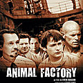 Animal factory (les fauves rentrent au bercail)