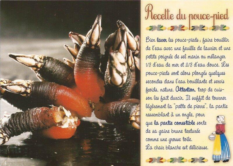 carte postale recette (325)