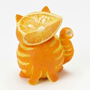 couleur orange 10