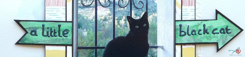 A little black cat - Sentiment - partie 1 L'Atelier au soleil