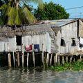 Maisons au bord du fleuve