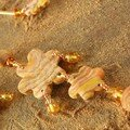 Un collier dans sa couleur automnale, vue 1