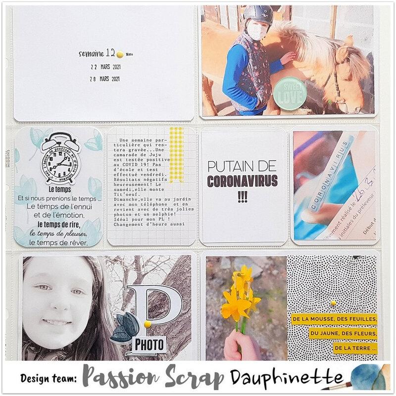 DT Passionscrap s 12