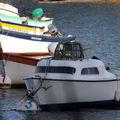 Bateaux à sainte-marine