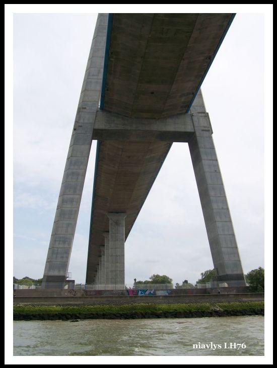 Pont de Normandie vue de la Seine 8