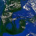 Une masse d'algues se forme au large des côtes brésiliennes