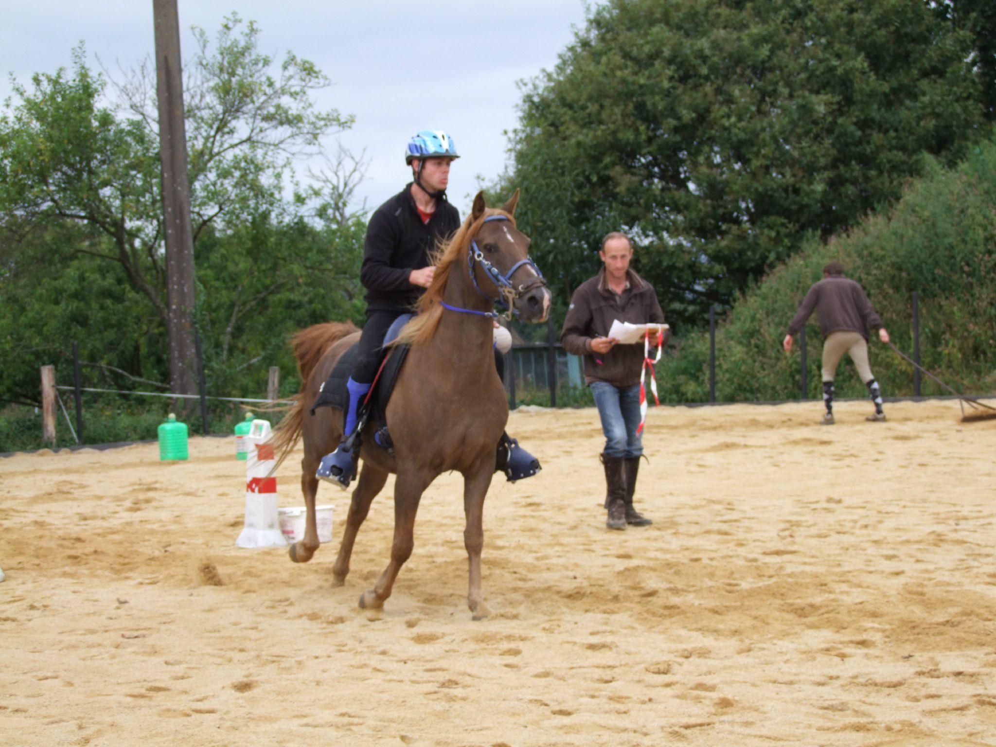 équitation d'extérieur - parcours en terrain varié (192)