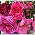 Des roses et des tiges d'aubépines qui