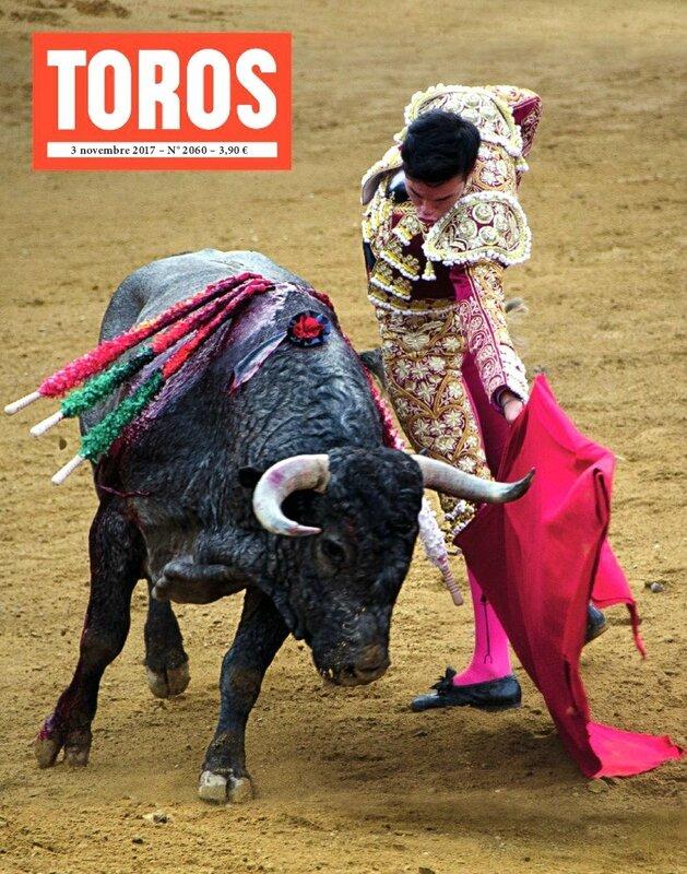 TOROS_2060