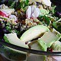 Salade de quinoa, haricots verts, radis et avocat hass
