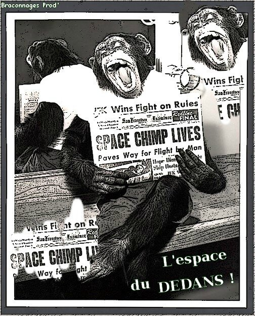 Chimp'Space